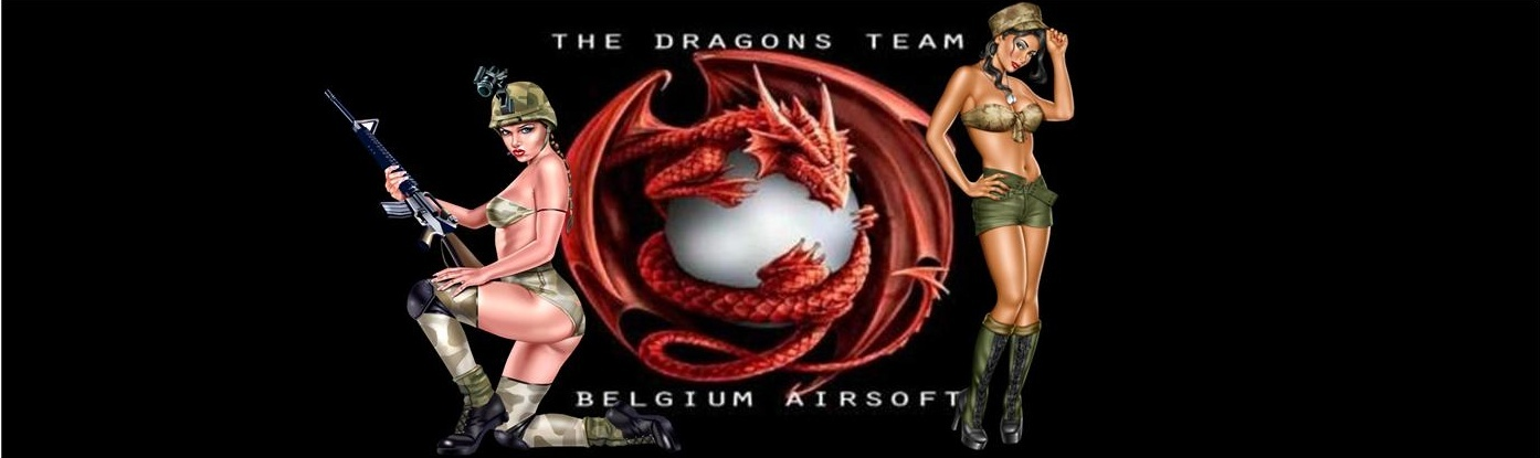 THE DRAGON'S TEAM