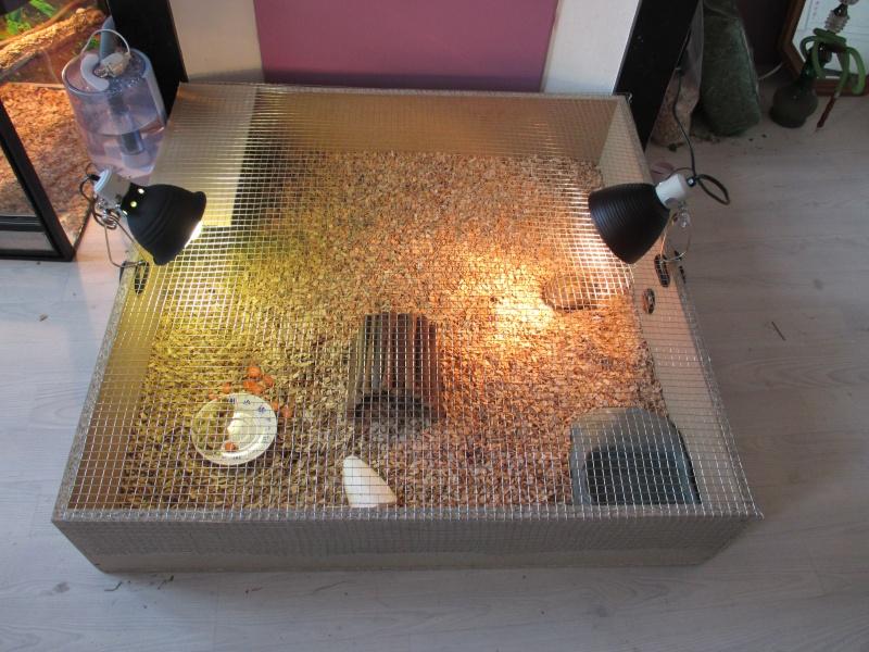lampe chauffante et uv pour tortue design de maison. Black Bedroom Furniture Sets. Home Design Ideas