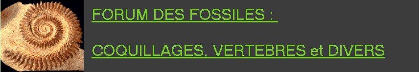 paleontologie francaise