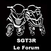 SGT3R® - Scooters GT 3 Roues - www.sgt3r.com