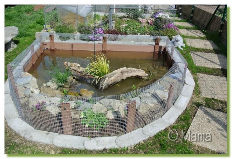 20170718021636 protection pour bassin de jardin avsort for Bache bassin jardiland