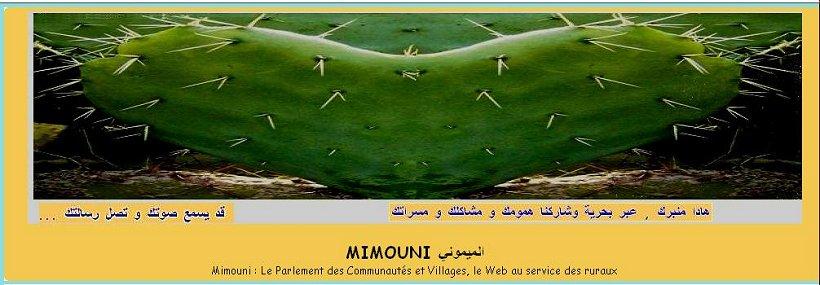 Mimouni   El mimouni