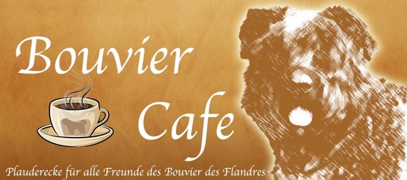 Bouvier Cafe