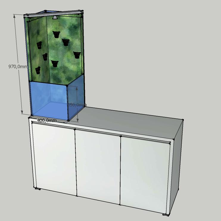 Petit aquarium v g talis avec mur v g tal for Mur vegetal aquarium