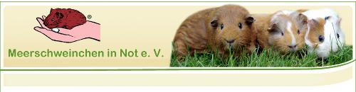 meerschweinchen-in-not.de