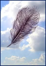 Un mot invisible dans LES 4 SAISONS plumes10
