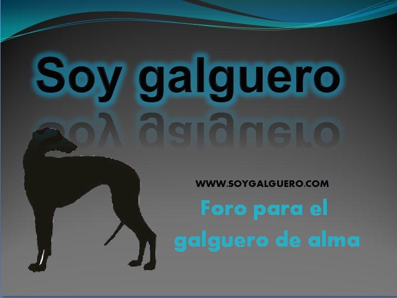 SOY GALGUERO