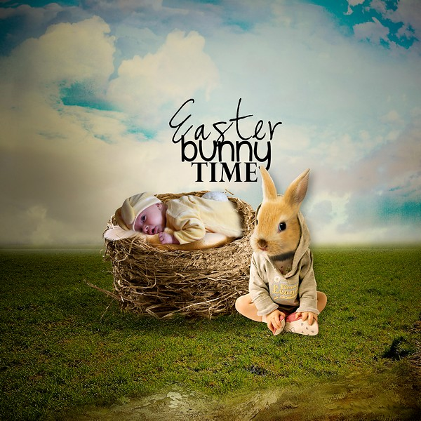 bunny_10.jpg