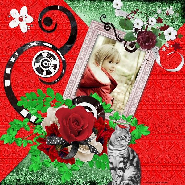 http://i57.servimg.com/u/f57/16/86/52/86/rouge_11.jpg