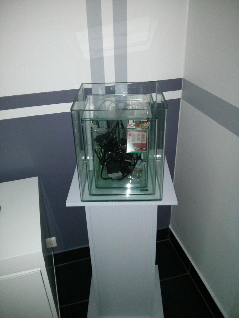 nouveaux nano cube dennerle reportage. Black Bedroom Furniture Sets. Home Design Ideas
