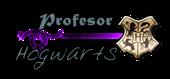 Profesor Hogwarts