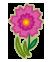 Blumen+Unkraut
