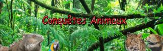 Conquetes des animaux