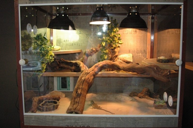 table basse aquarium maxi zoo. Black Bedroom Furniture Sets. Home Design Ideas