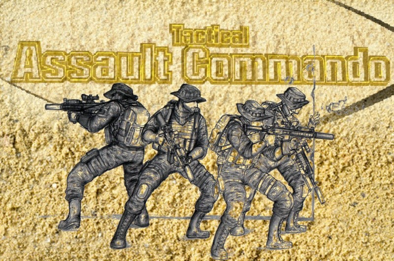 Tactical Assault Commando