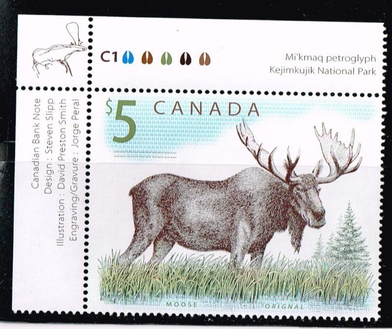 moose_10.jpg