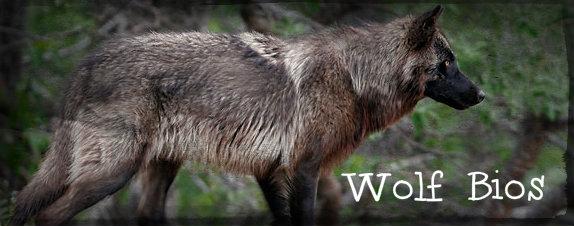 Wolf Bios