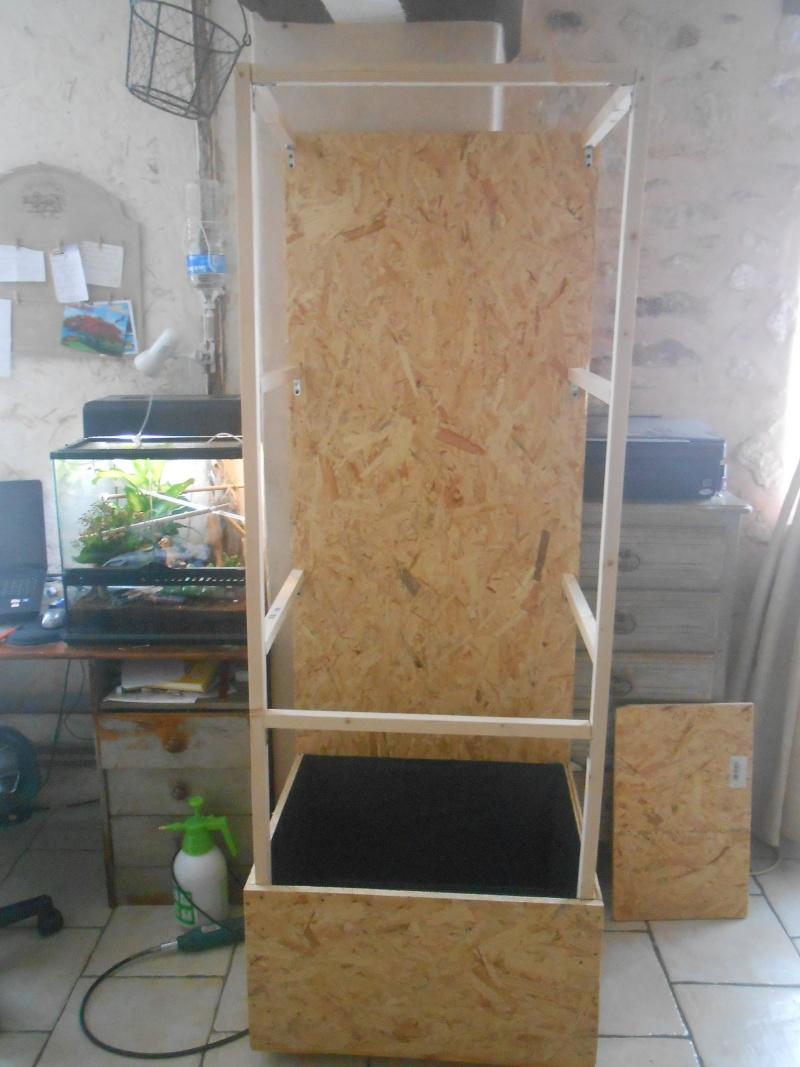 construction de mon flexarium craie. Black Bedroom Furniture Sets. Home Design Ideas