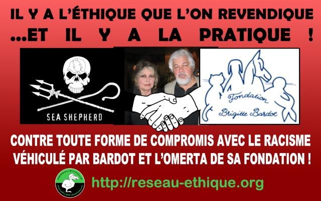 En France les antifascistes critiquant Paul Watson, le font le plus souvent pour ses liens avec Brigitte Bardot et sa fondation