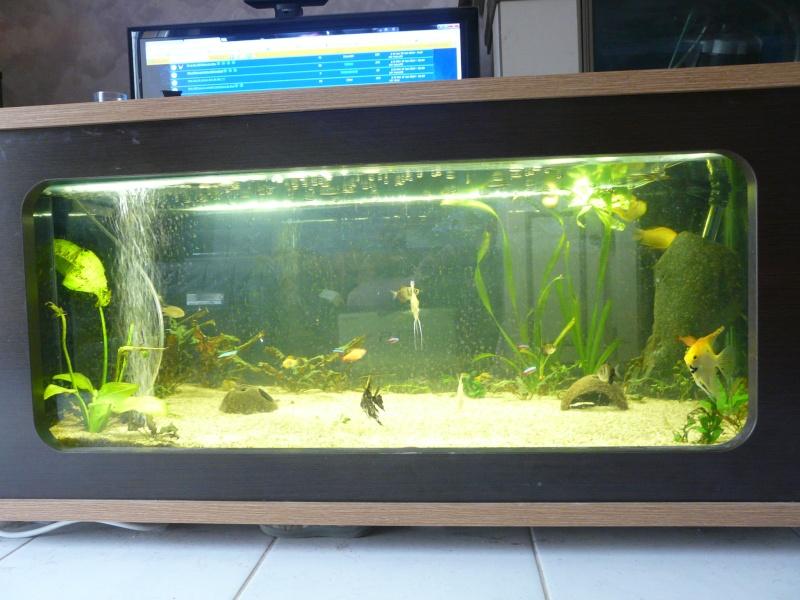 Table basse aquarium prix voici mon offre cette table for Aquarium prix