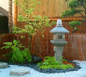 R solu ou trouver des plantes pour un jardin japonais for Ou acheter des plantes