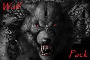 Wolfpack team