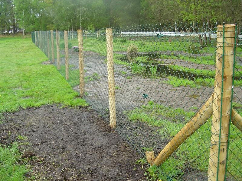 Construction d 39 un parc canard d 39 ornement - Bassin canard bache ...
