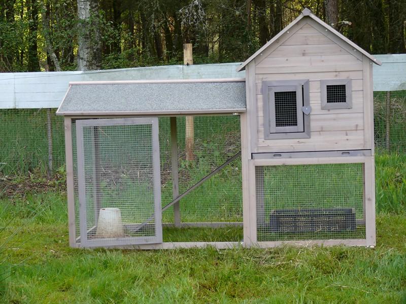 superficie poulailler renseignements pour des poules d. Black Bedroom Furniture Sets. Home Design Ideas