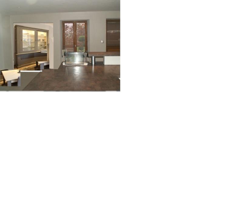 Decoration salon salle a manger en harmonie avec ma for Deco salon avec cuisine ouverte