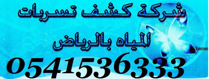 كشف تسربات المياه بالرياض 0541536333