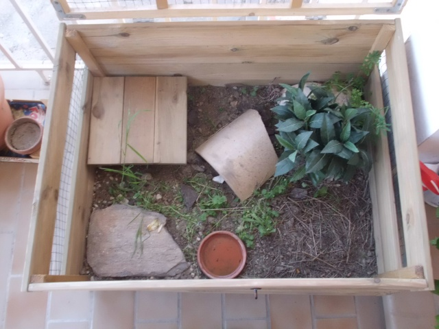 un parc sur terrasse pour ma tortue hermann. Black Bedroom Furniture Sets. Home Design Ideas